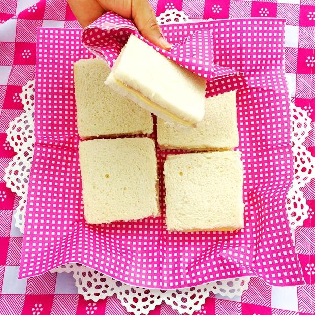 picnic-jardin-botanico-pink16