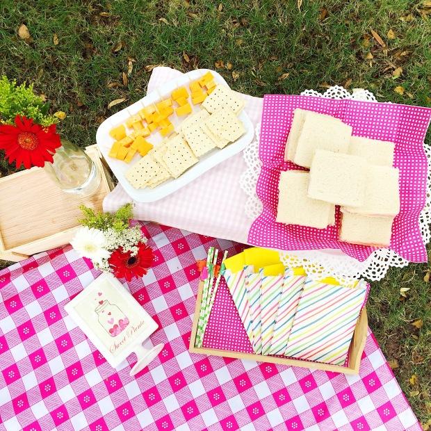 picnic-jardin-botanico-pink4