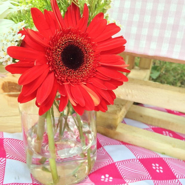 picnic-jardin-botanico-pink6