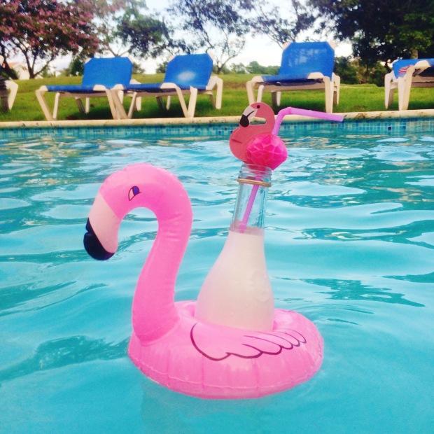 palms-spring-pool-2